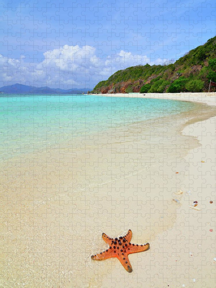 Water's Edge Puzzle featuring the photograph Starfish On Beach Sand by Joyoyo Chen