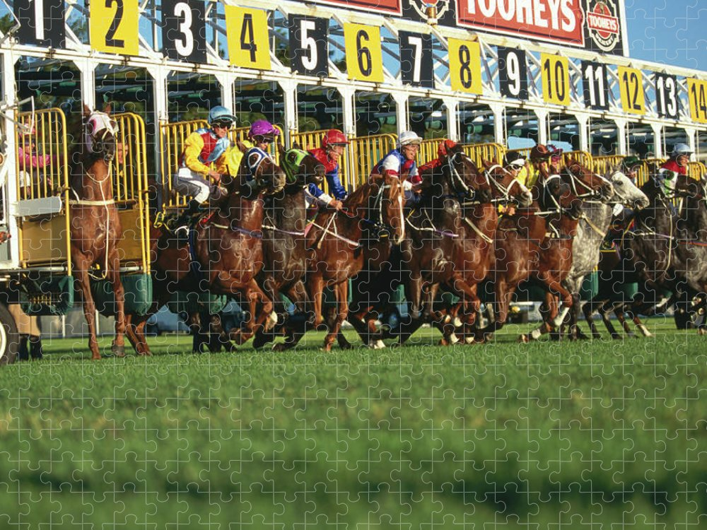 Horse Puzzle featuring the photograph Start Of Horse Race, Sydney, New South by Oliver Strewe
