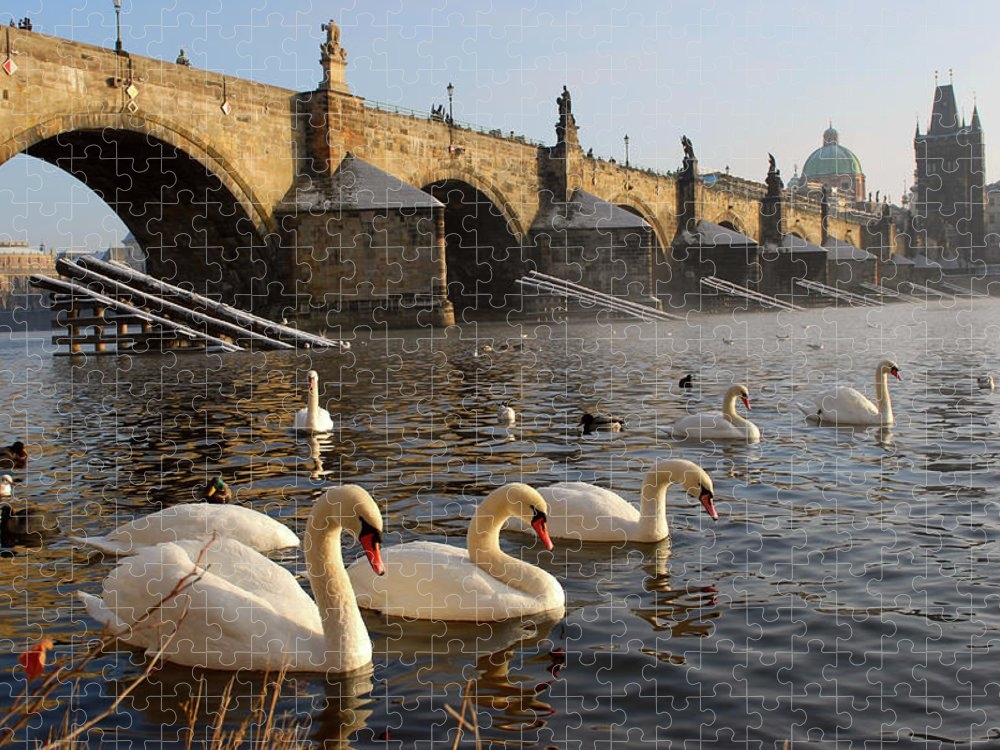 Arch Puzzle featuring the photograph Swans And Charles Bridge by Dibrova