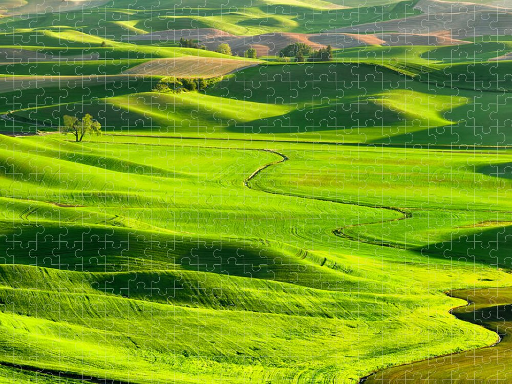 Scenics Puzzle featuring the photograph The Palouse Rolling Hills by Justinreznick