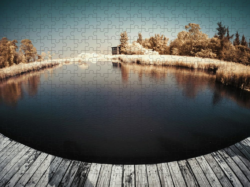 Tranquility Puzzle featuring the photograph Trees And Plants In A Pond by D3sign