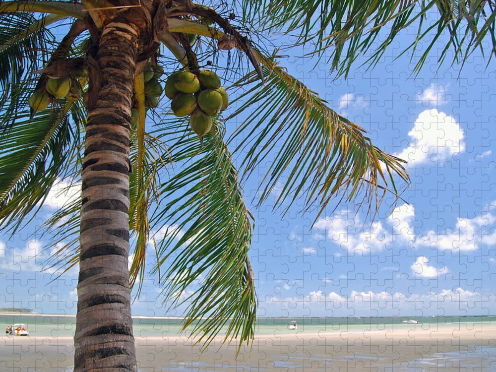 Tropical Tree Puzzle featuring the photograph Tropical Beach by Eduleite