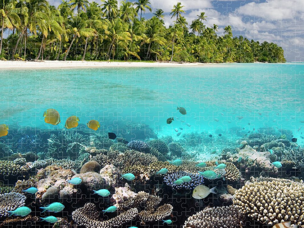 Underwater Puzzle featuring the photograph Tropical Paradise - The Maldives by Steve Allen