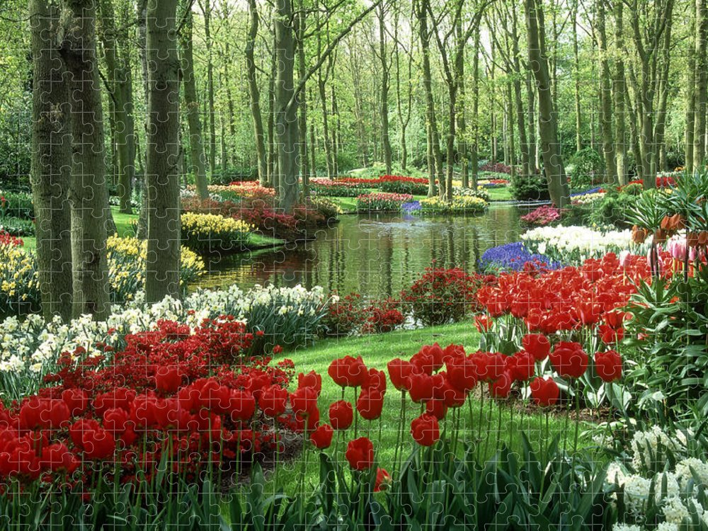 Flowerbed Puzzle featuring the photograph Woods And Stream, Keukenhof Gardens by Robin Smith