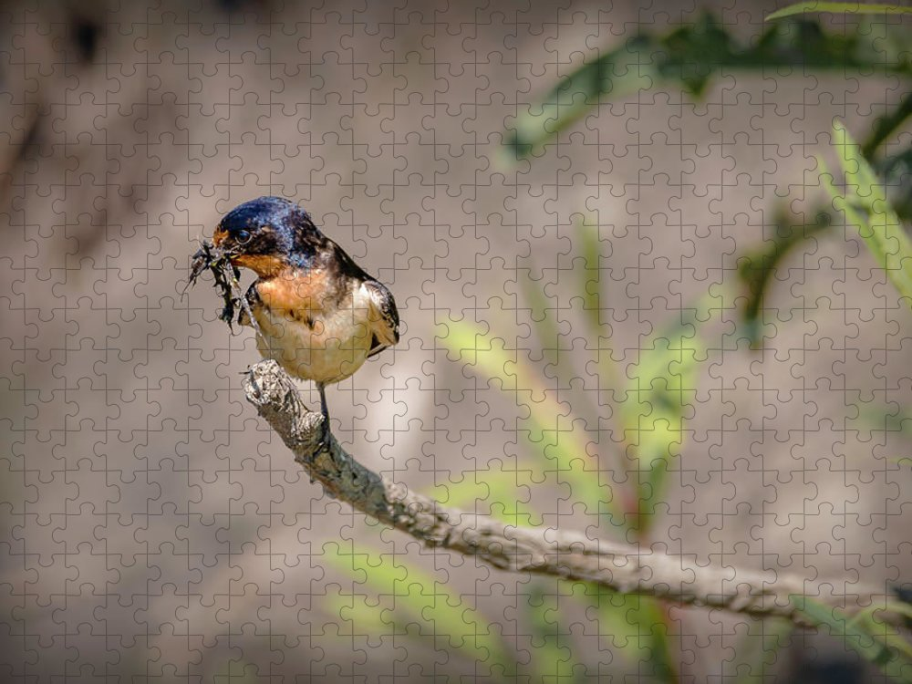 Bird Puzzle featuring the photograph 20-0616-0528 by Anthony Roma