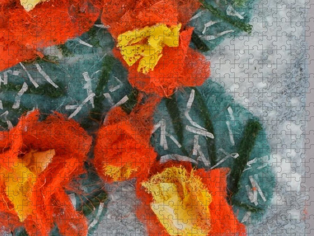 Dryer Sheets Puzzle featuring the mixed media Cactus Flowers by Charla Van Vlack