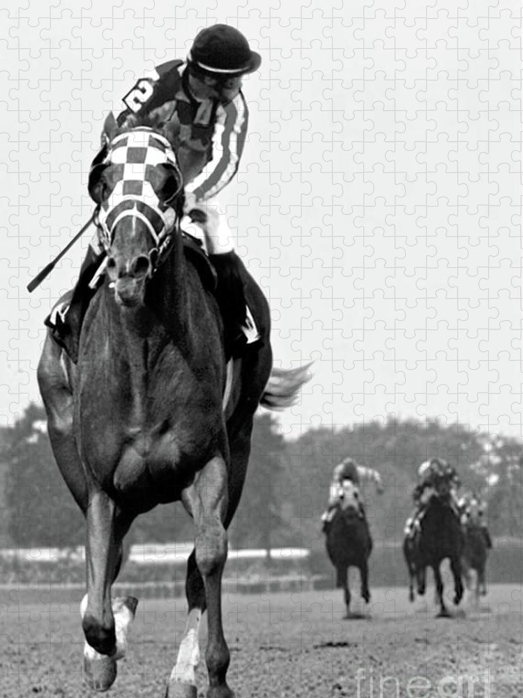 Looking Back Puzzle featuring the painting Looking back, 1973, Secretariat, stretch run, Belmont Stakes by Thomas Pollart