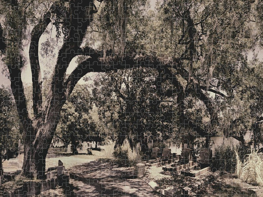Castle Puzzle featuring the photograph Magnolia Cemetery by James Christopher Hill