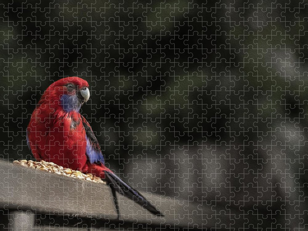 Rosella Puzzle featuring the photograph Rosella 1 by Leigh Henningham