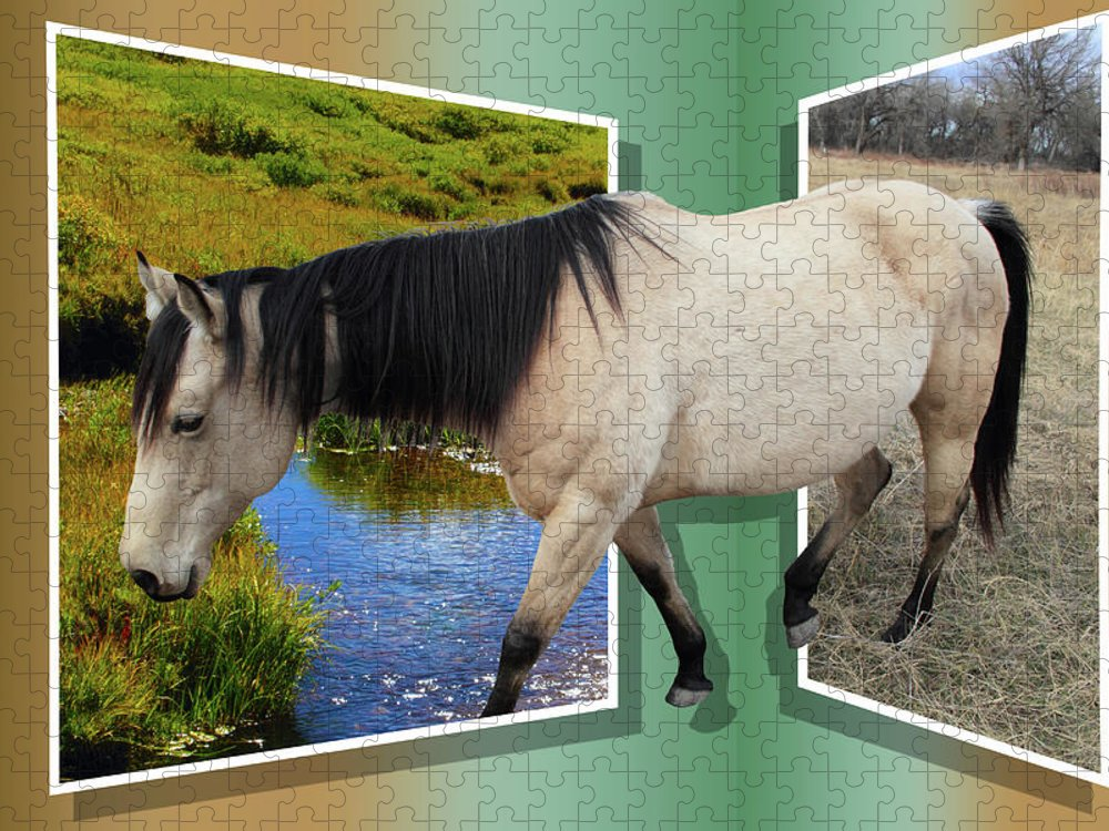 Horse Puzzle featuring the photograph The Grass Is Always Greener On The Other Side by Shane Bechler