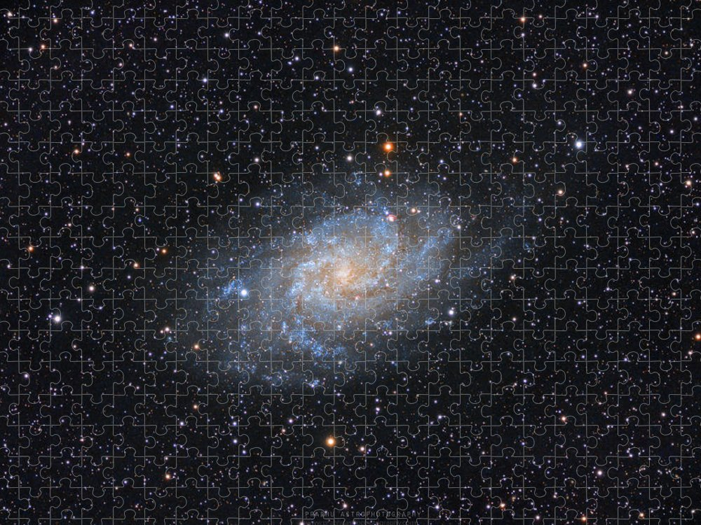 Galaxy Puzzle featuring the photograph Triangulum Galaxy by Prabhu Astrophotography