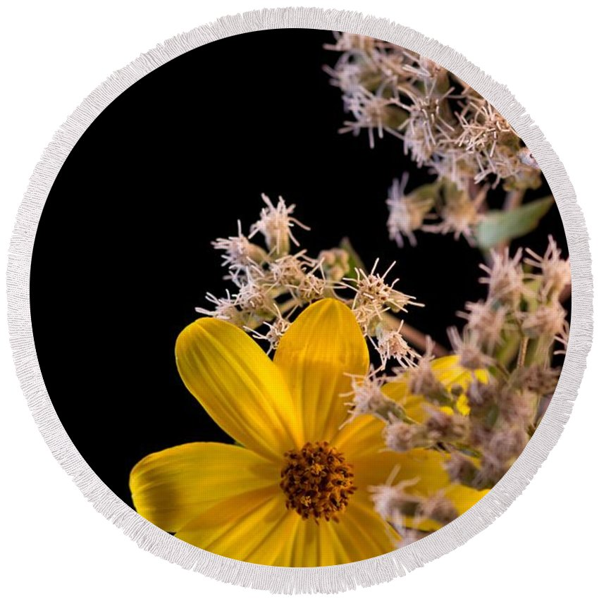 Tick Seed Flower Round Beach Towel featuring the photograph Shy Yellow Flower by Sandra Clark