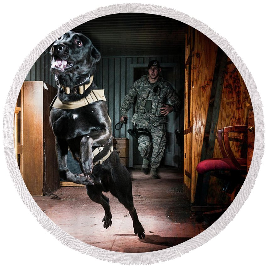 Attack Round Beach Towel featuring the photograph An Air Force Security Forces K-9 by Stacy Pearsall