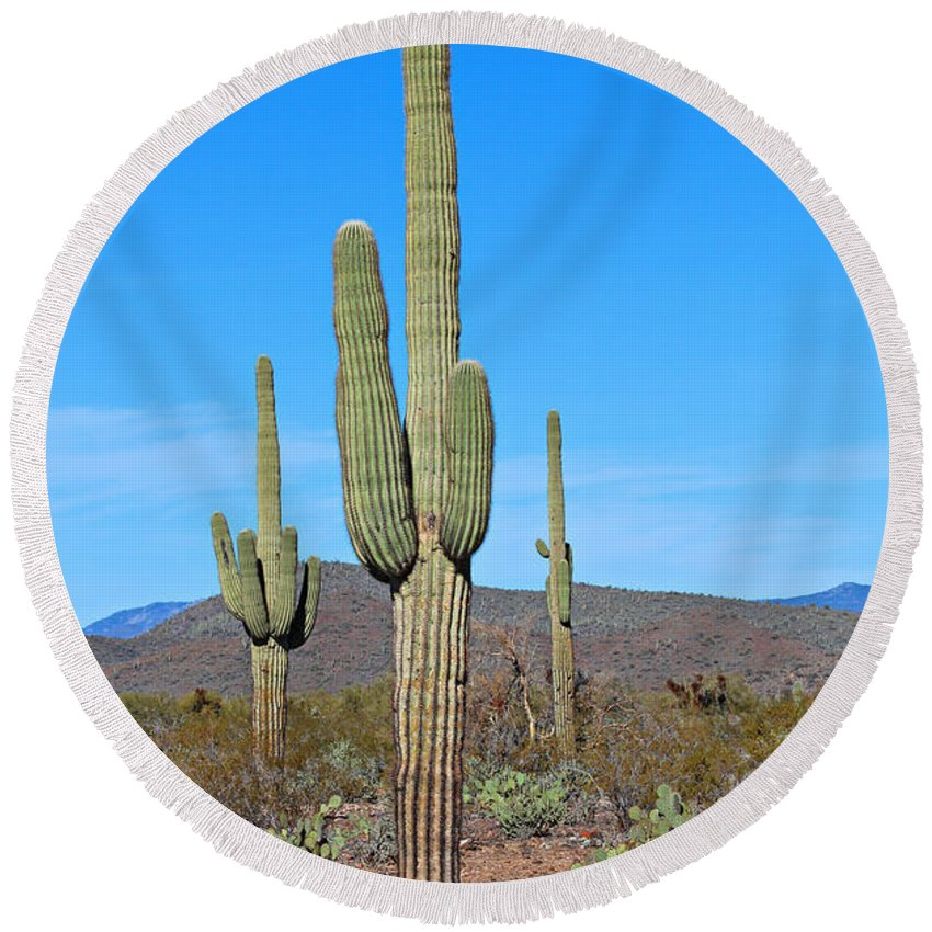 Desert Round Beach Towel featuring the photograph Arizona Desert by Paul Fell