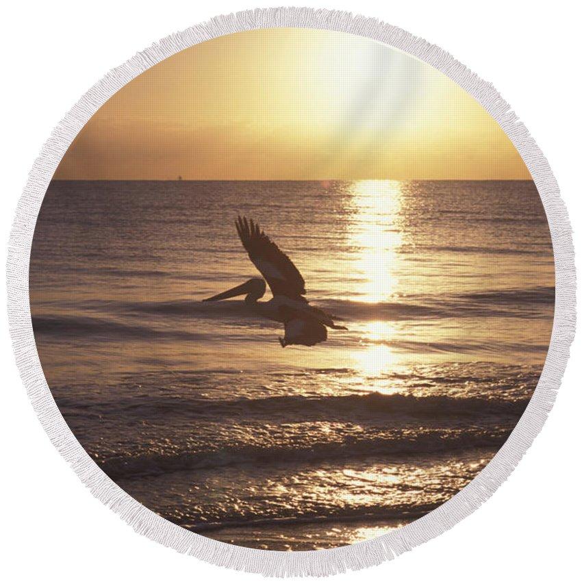 Along Round Beach Towel featuring the photograph Australian Pelican Glides At Sunrise by Jurgen Freund