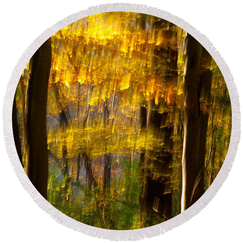 Ohio Round Beach Towel featuring the photograph Backlit Leaves Abstract by Kenneth Sponsler