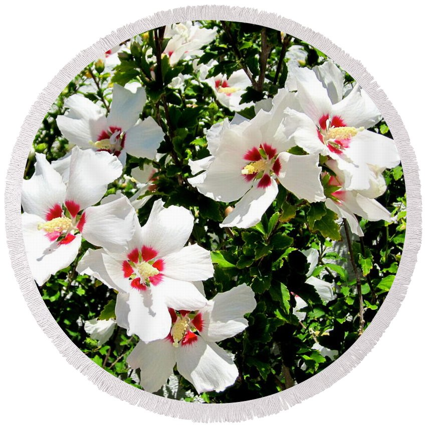 Hibiscus Round Beach Towel featuring the photograph Beautiful Hibiscus by Phyllis Kaltenbach
