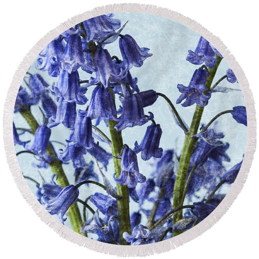 Bluebell Round Beach Towel featuring the photograph Bluebells 2 by Steve Purnell