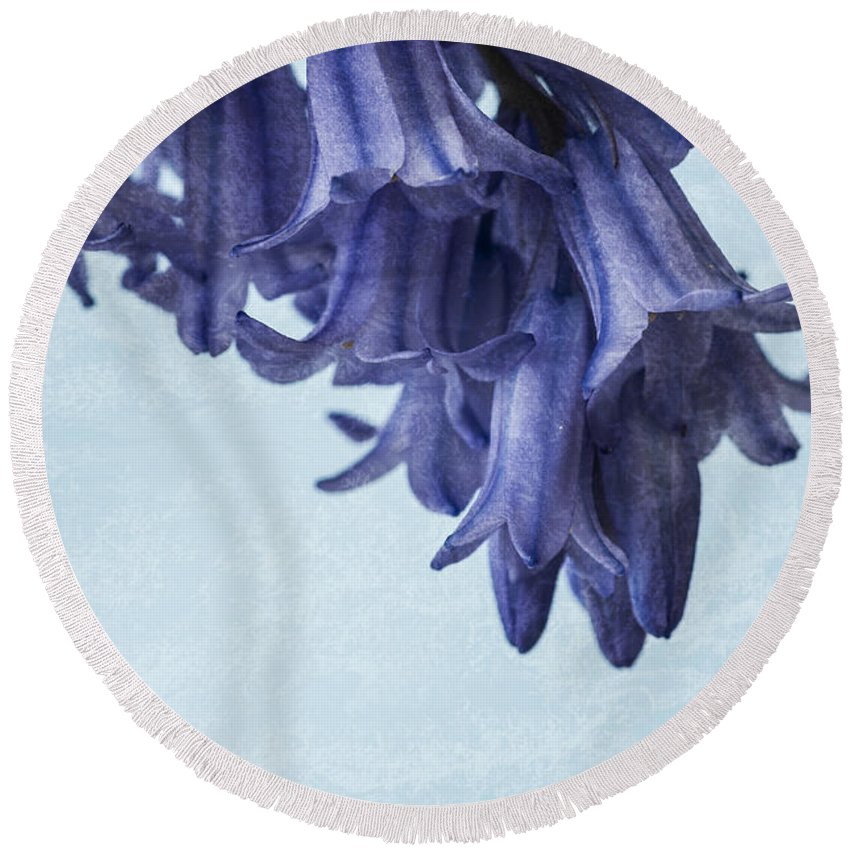 Bluebell Round Beach Towel featuring the photograph Bluebells 3 by Steve Purnell