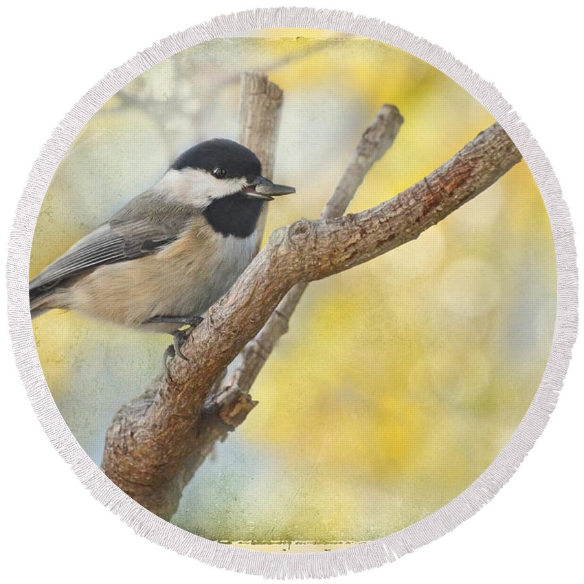 Animals Round Beach Towel featuring the photograph Chickadee With His Prize  by Debbie Portwood