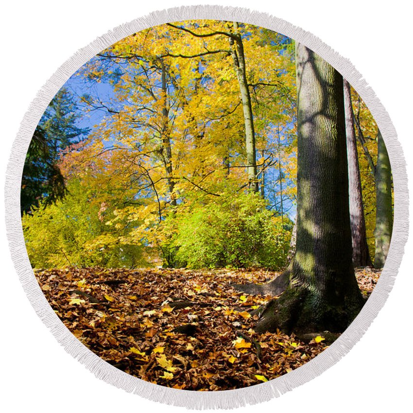 Fall Round Beach Towel featuring the photograph Colorful Fall Autumn Park by Michal Bednarek