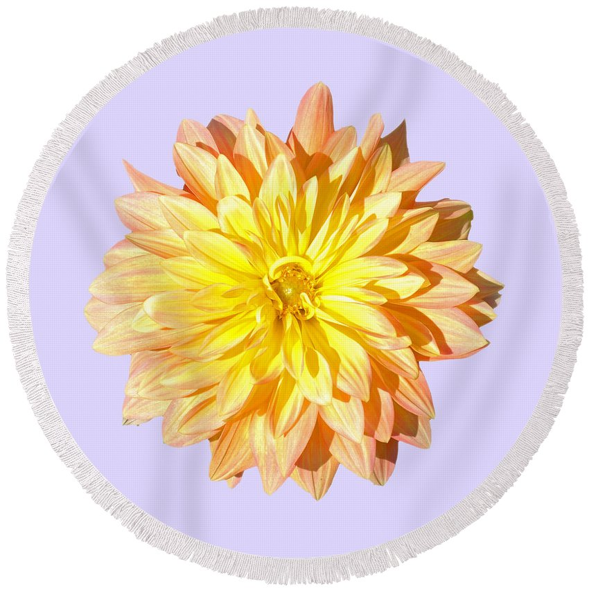 Charles Round Beach Towel featuring the photograph Dahlia by Charles Harden