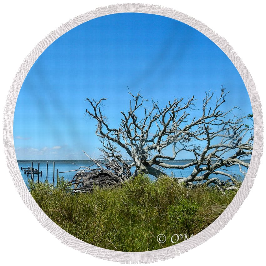 Cedar Island Round Beach Towel featuring the photograph Fallen by Paula OMalley