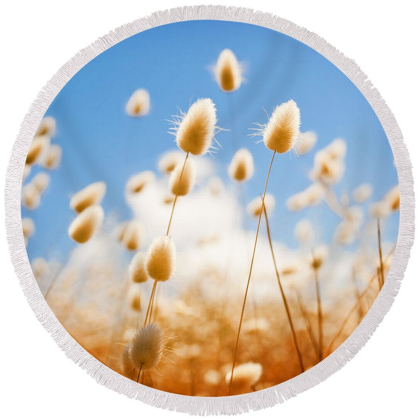 South Australia Round Beach Towel featuring the photograph Golden Field by Tim Hester