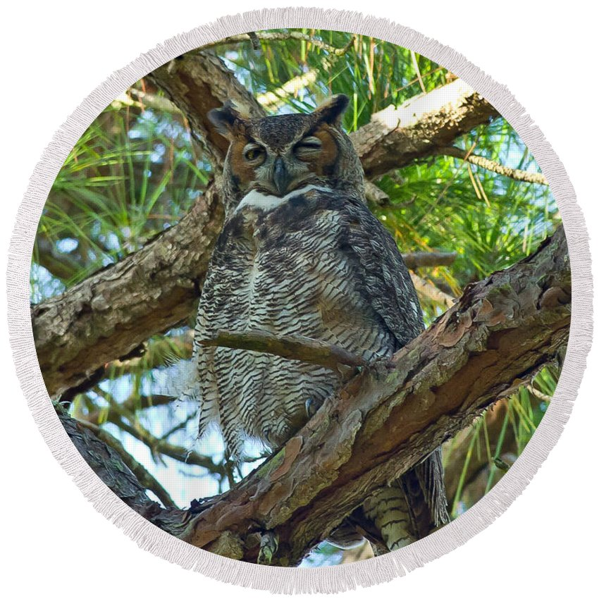 Great Horned Owl Round Beach Towel featuring the photograph Great Horned Owl by Stephen Whalen