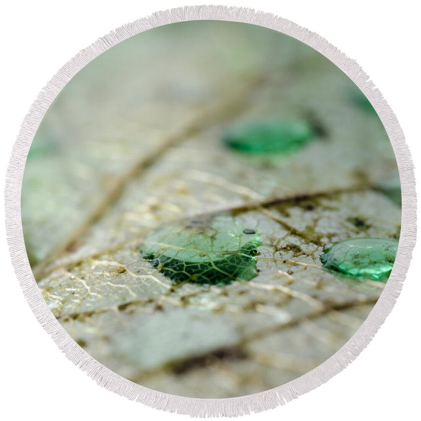 Leaf Round Beach Towel featuring the photograph Green Drops by Mats Silvan