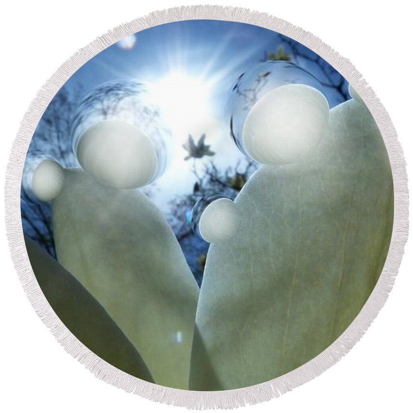 Spheres Round Beach Towel featuring the photograph 1 H Sphrs Absorbing The Majesty by Dale Crum