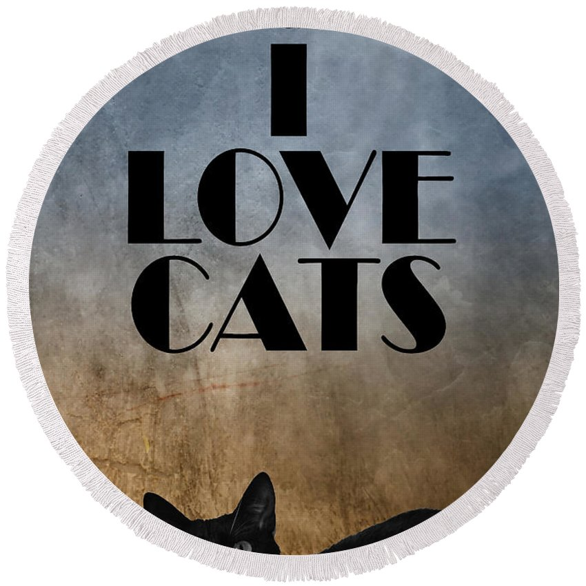 Cat Round Beach Towel featuring the photograph I Love Cats by Justyna JBJart