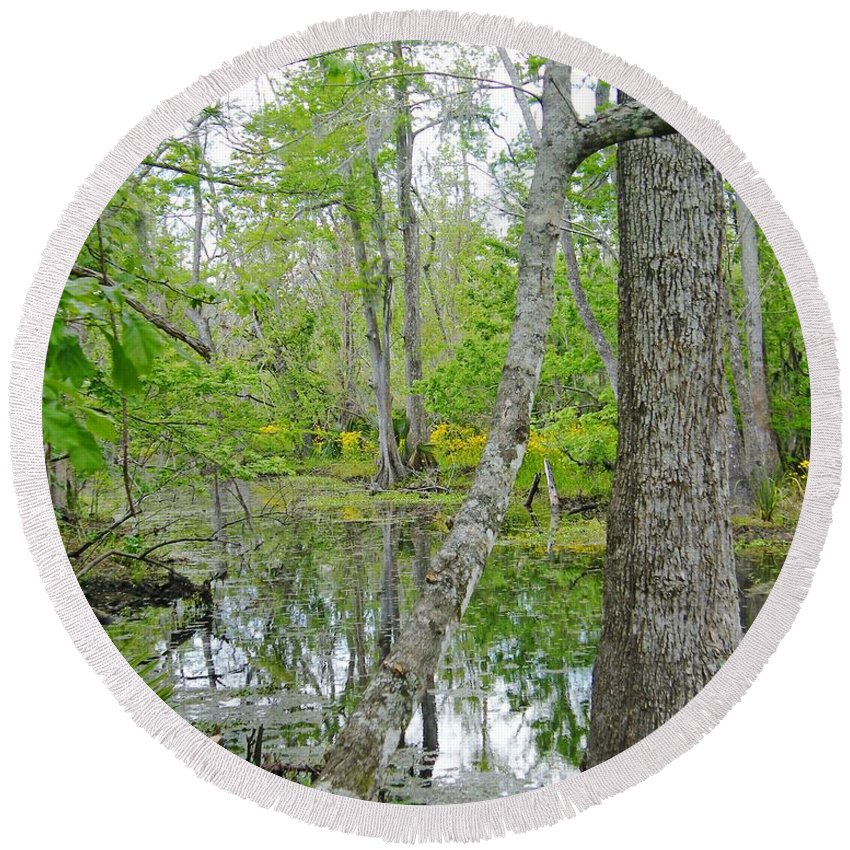 National Preserve Round Beach Towel featuring the photograph Jean Lafitte Swamp by Lizi Beard-Ward