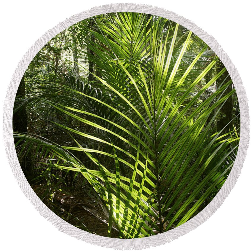 Rain Forest Round Beach Towel featuring the photograph Jungle Ferns by Les Cunliffe