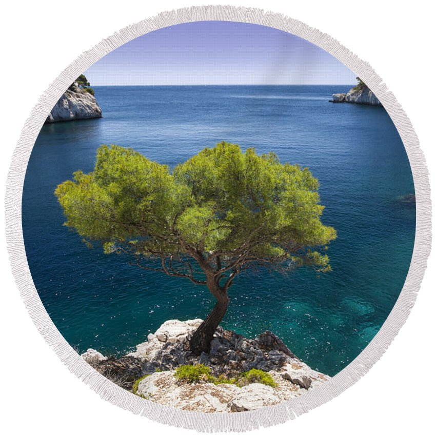 Calanque Round Beach Towel featuring the photograph Lone Pine Tree by Brian Jannsen