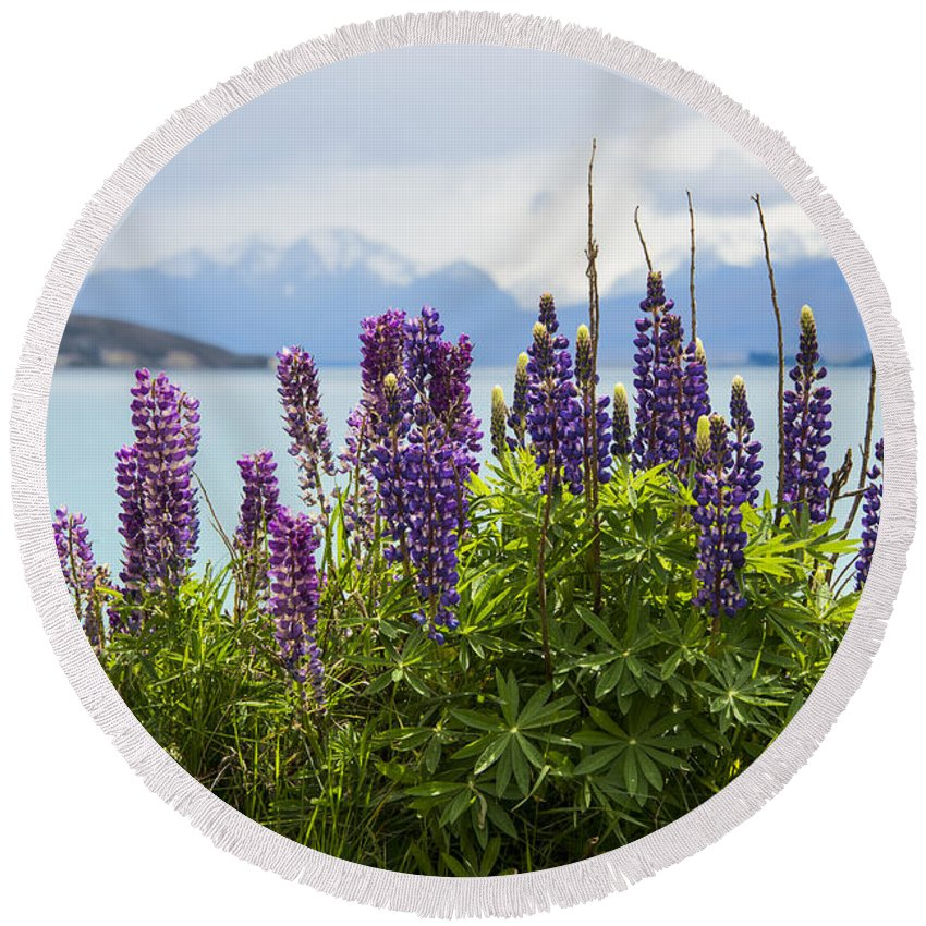 Lake Tekapo New Zealand Lakes Lupin Lupins Flower Flowers Bloom Blooms Plant Plants Landscape Landscape Waterscape Waterscapes Round Beach Towel featuring the photograph Lupin Blooms by Bob Phillips