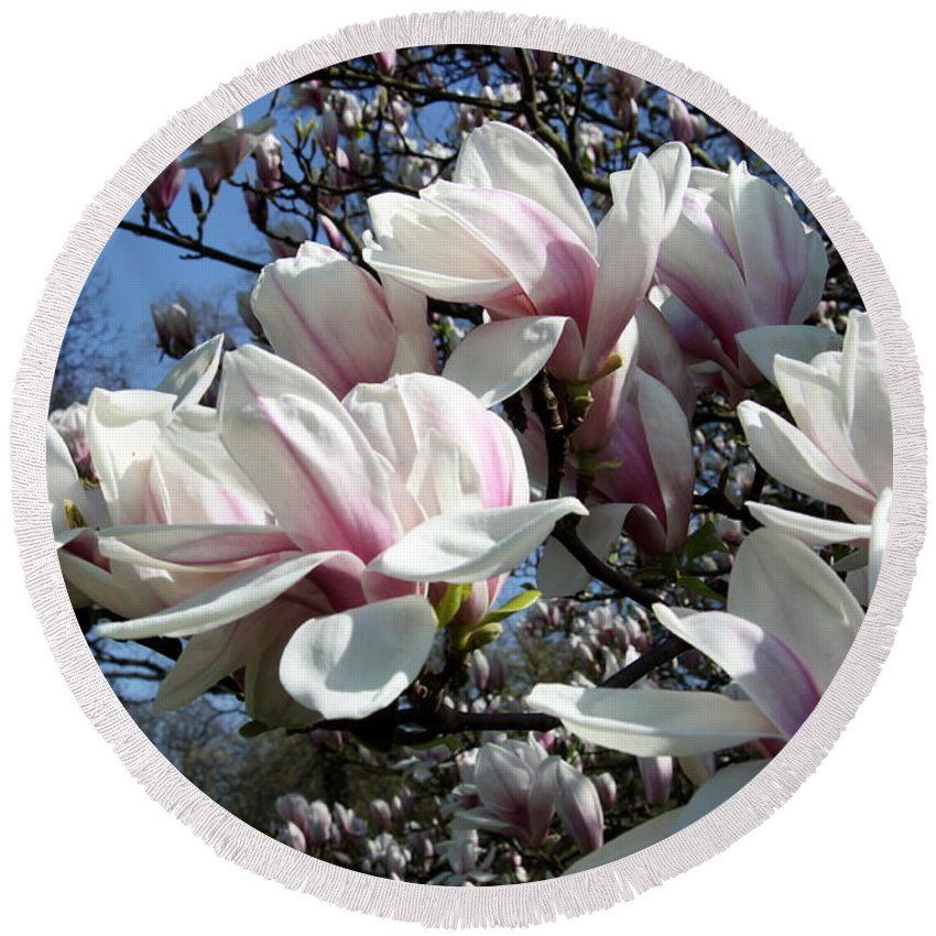 Magnolia Round Beach Towel featuring the photograph Magnolia Twig by Christiane Schulze Art And Photography