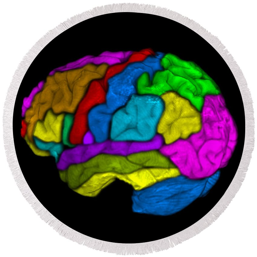 Science Round Beach Towel featuring the photograph Mri Of Normal Brain by Living Art Enterprises