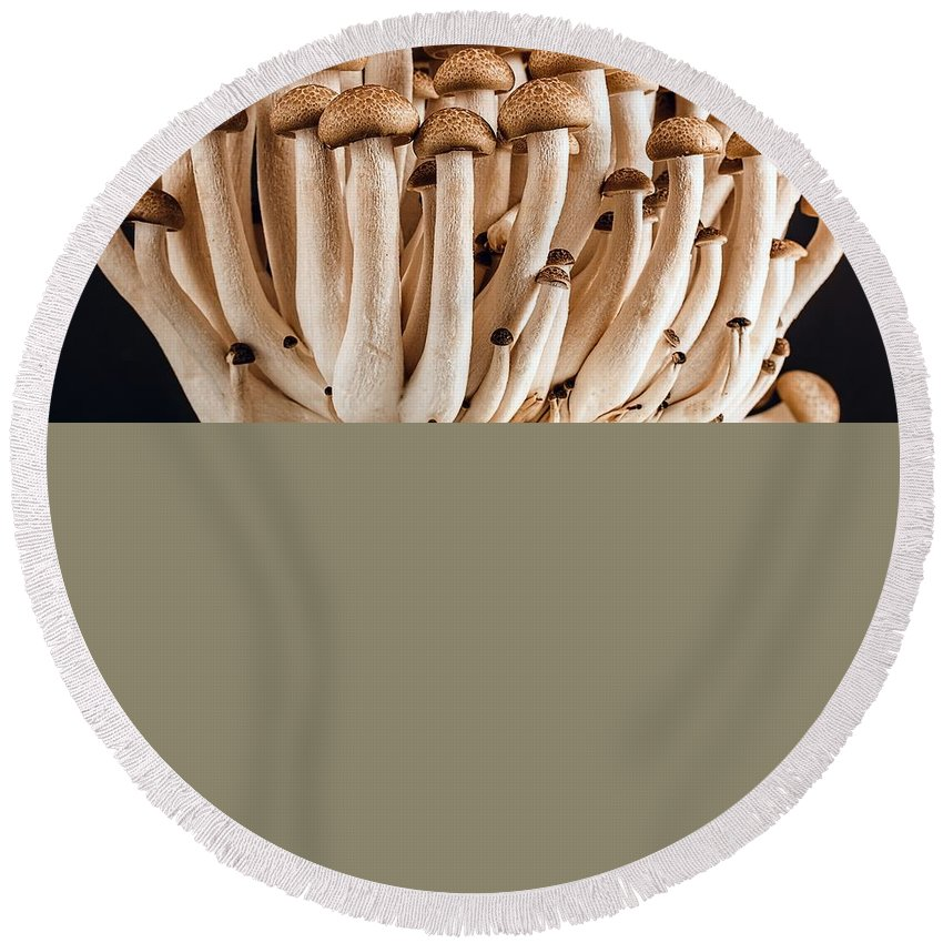 Wild Round Beach Towel featuring the photograph Mushrooms by FL collection