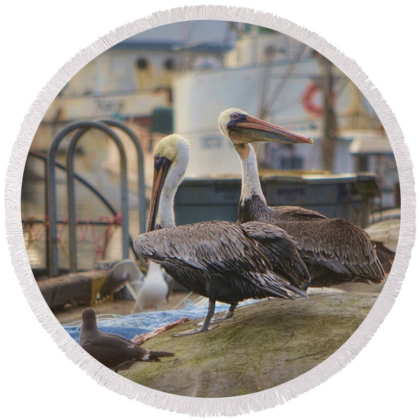 Pelican Round Beach Towel featuring the photograph Pelican Duo by Donna Greene