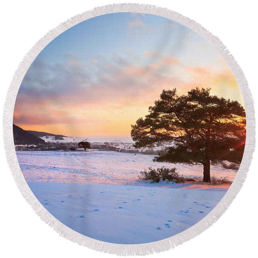 Sunset Round Beach Towel featuring the photograph Pine Tree by Milan Gonda