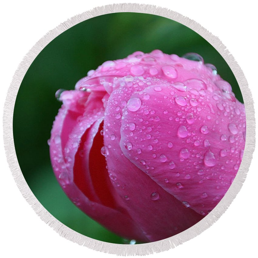 Flower Round Beach Towel featuring the photograph Pink Rain Drops by Susan Herber