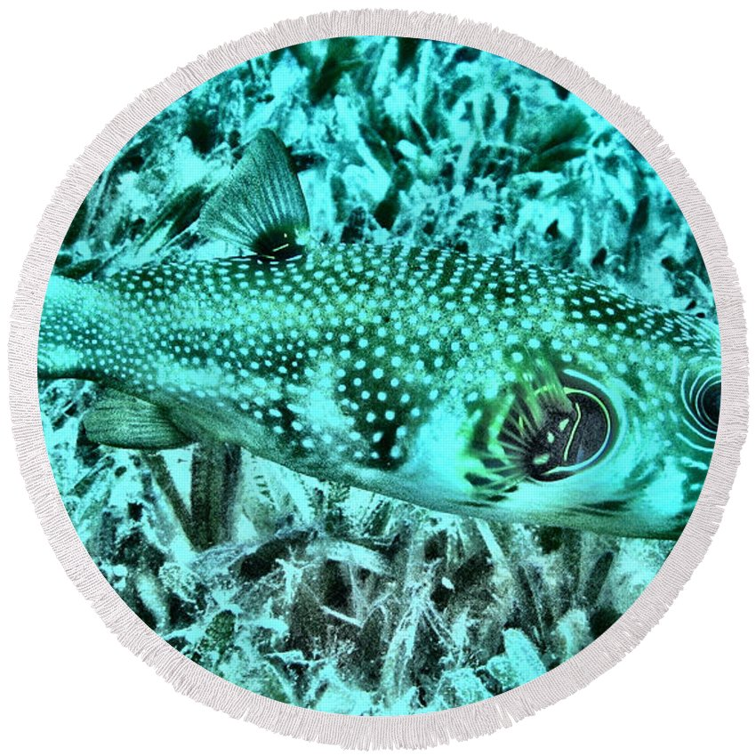 Abstract Round Beach Towel featuring the digital art Puffer Fish by Roy Pedersen