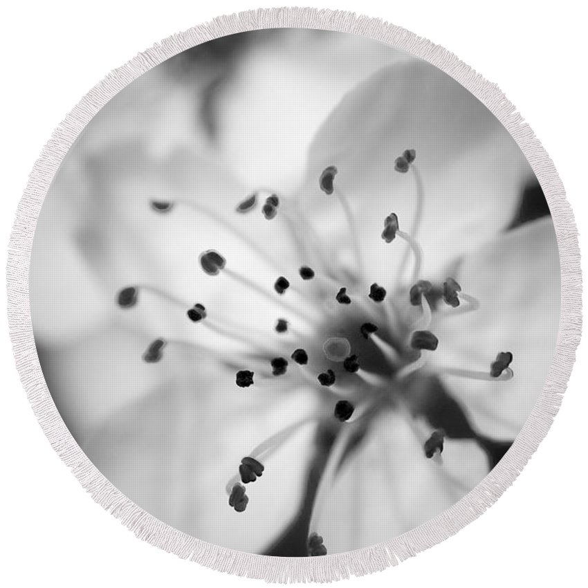 B&w Round Beach Towel featuring the photograph Spring Blooms 6692 by Timothy Bischoff