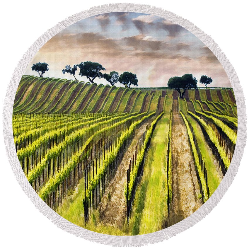 Vine Round Beach Towel featuring the photograph Spring Vineyard by Sharon Foster