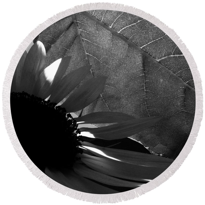 Black And White Round Beach Towel featuring the photograph 1 Sq Leafy Sun Shadows Bw by Dale Crum