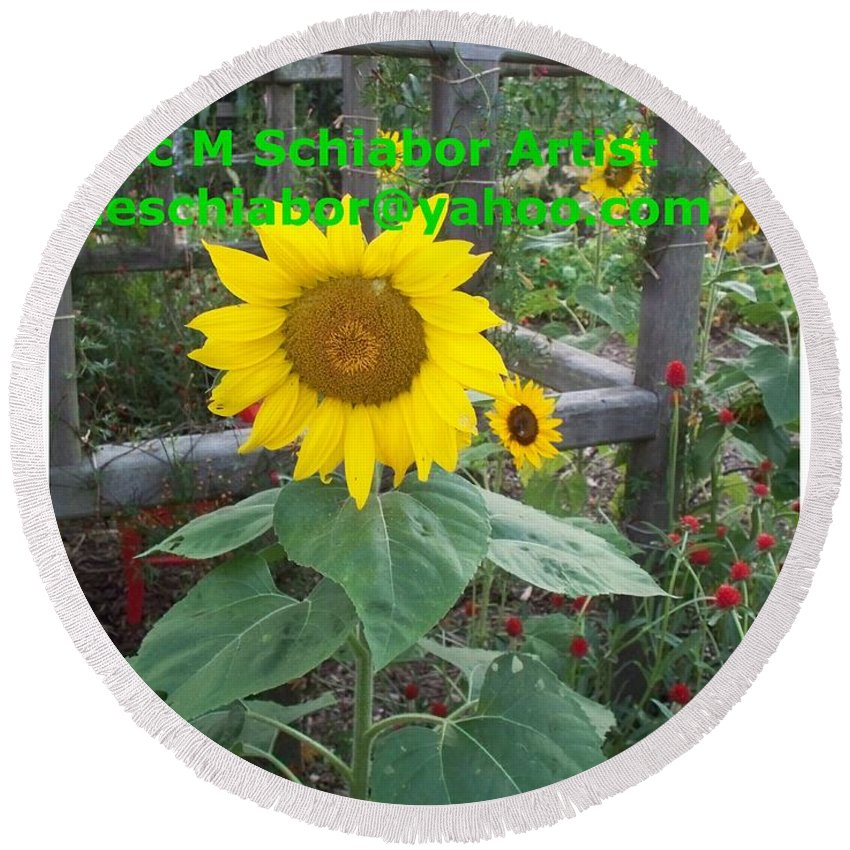 Sunflower Round Beach Towel featuring the photograph Sunflower by Eric Schiabor