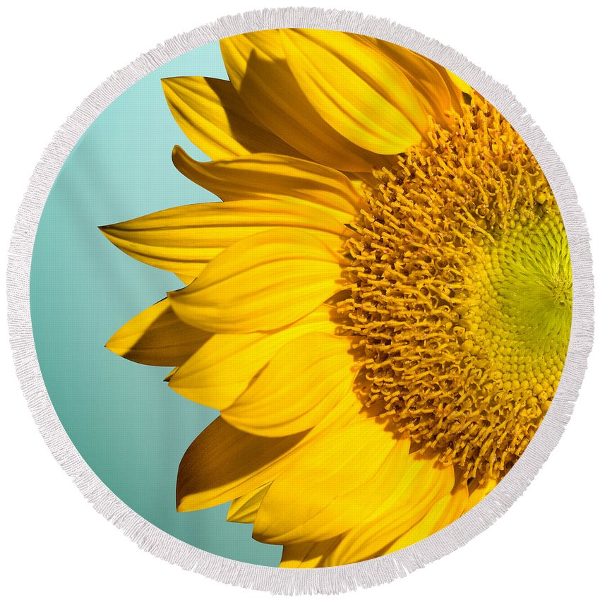Sunflowers Round Beach Towel featuring the photograph Sunflower by Mark Ashkenazi