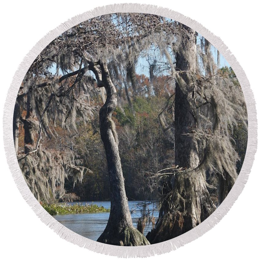Swamp Round Beach Towel featuring the photograph Swampreflection by Christiane Schulze Art And Photography