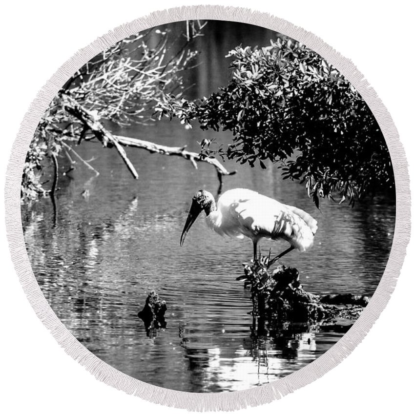 Wood Stork Round Beach Towel featuring the photograph Tranquility Bw by Norman Johnson